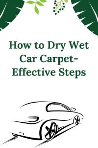 How to Dry Wet Car Carpet