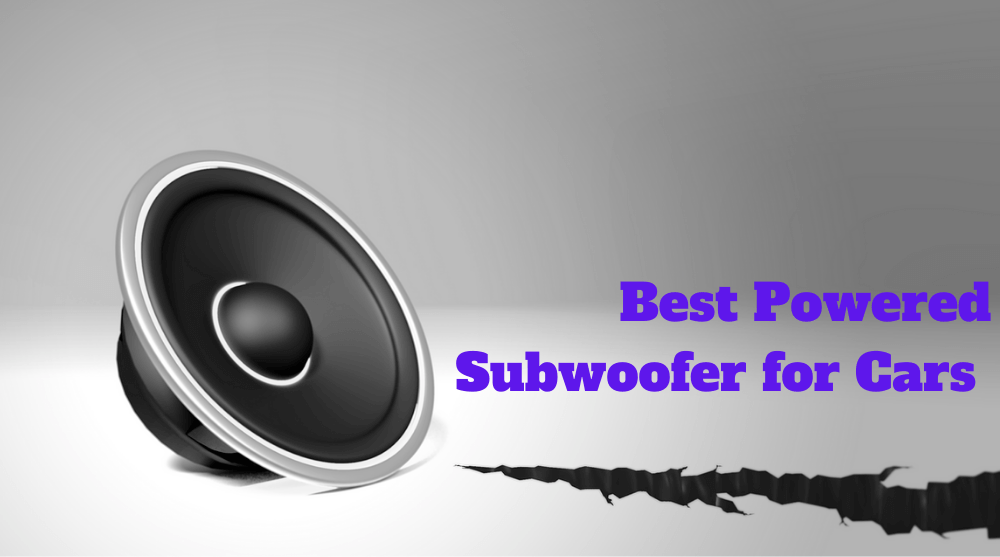 Best Powered Subwoofer for Cars
